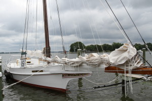 A classic skipjack, used for harvesting oysters on the bay