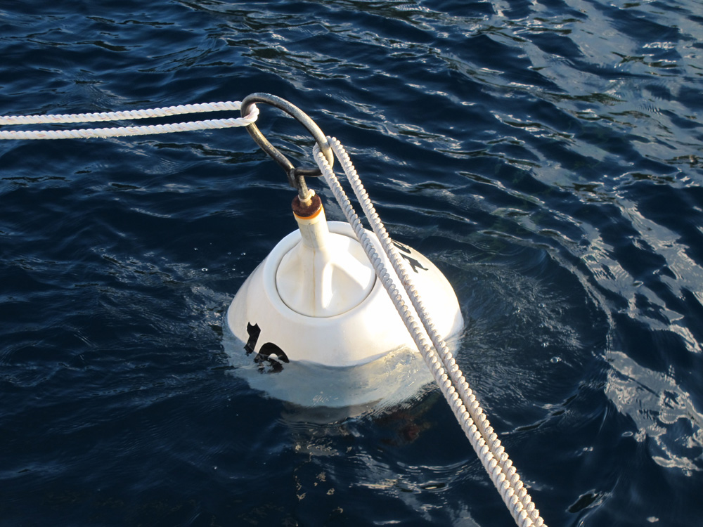 our giant mooring ball