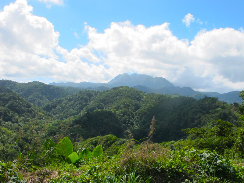 The stunning mountains of Dominica