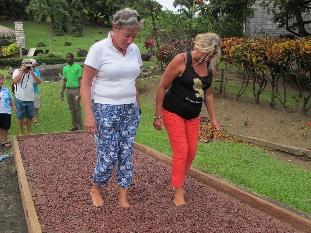 Penny and Mia getting the hang of aerating the beans the traditional way. Hard on the feet apparently!