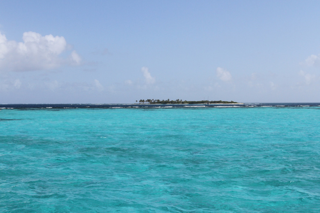 The reef at Tobago Cays, looking out at Petit Tabac Island