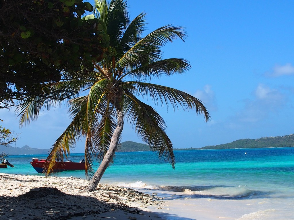 Tobago Cays, Southern Grenadines