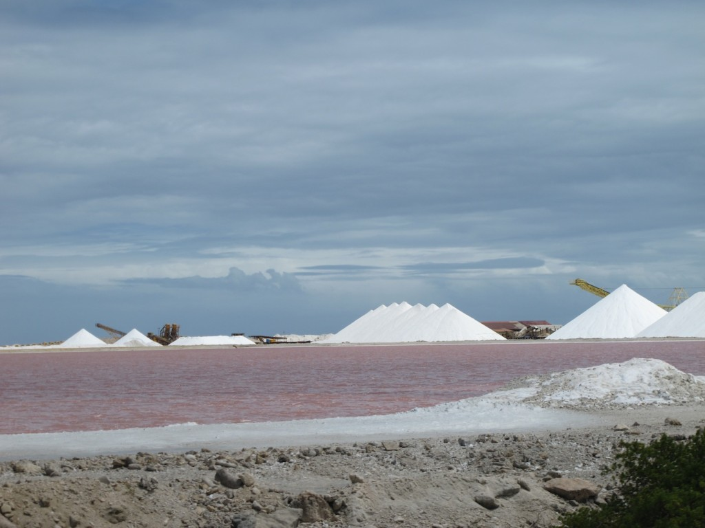 Condenser ponds and salt mounds, Bonaire