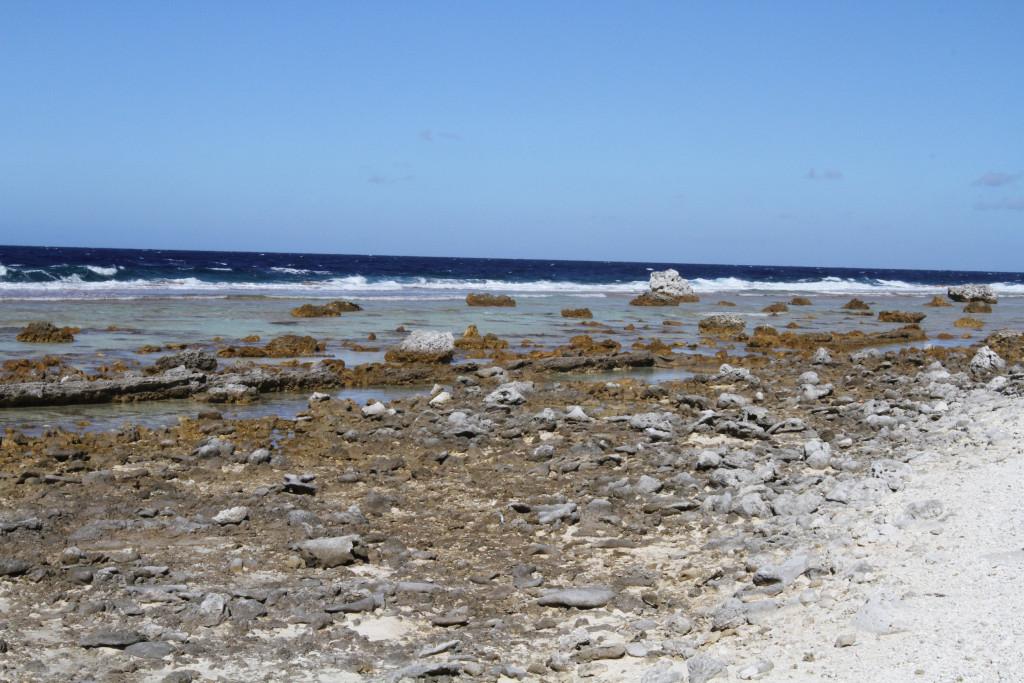 The vast reef surrounding the atoll, Tahanea