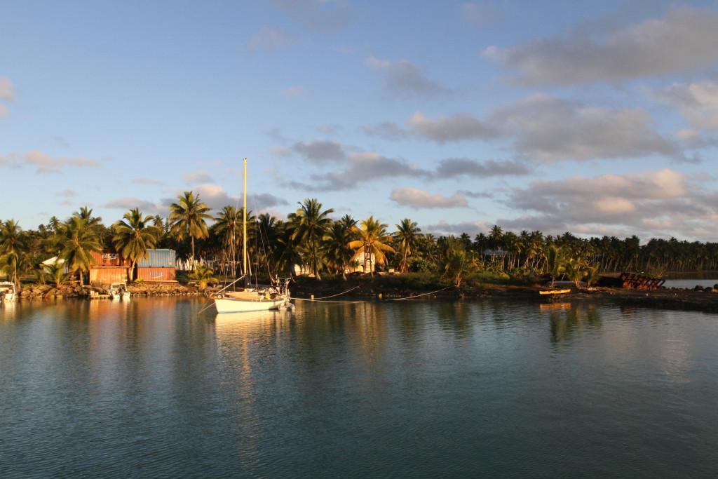 Our neighbour, Mic, on Calypso at Aratunga Harbour