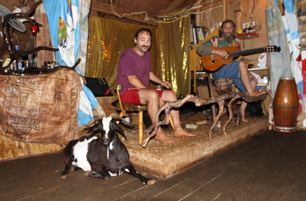 Chiquita the goat enjoys the music too