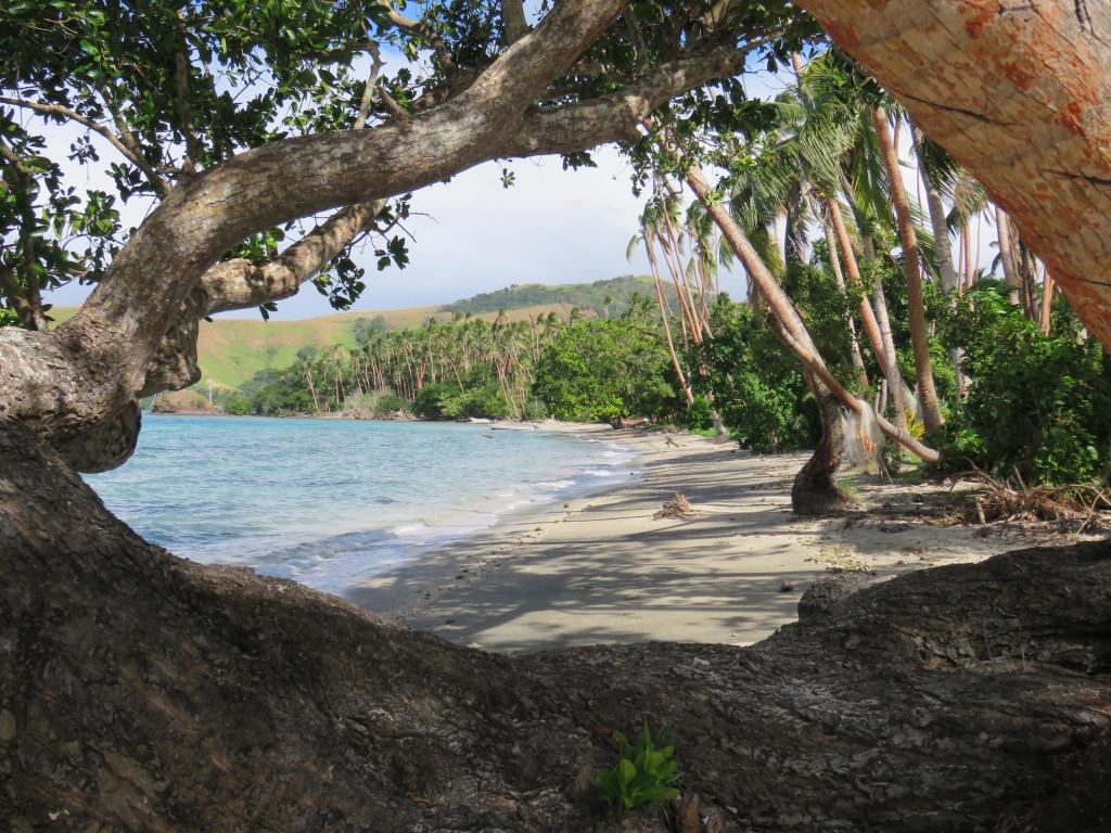 Viani Bay waterfront