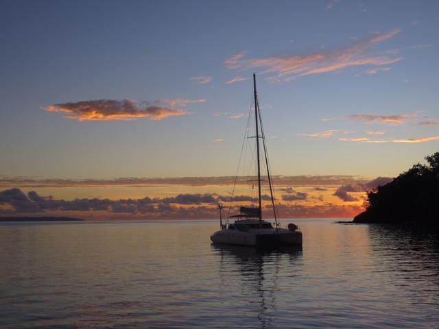 Toucan at dawn, Sau Bay