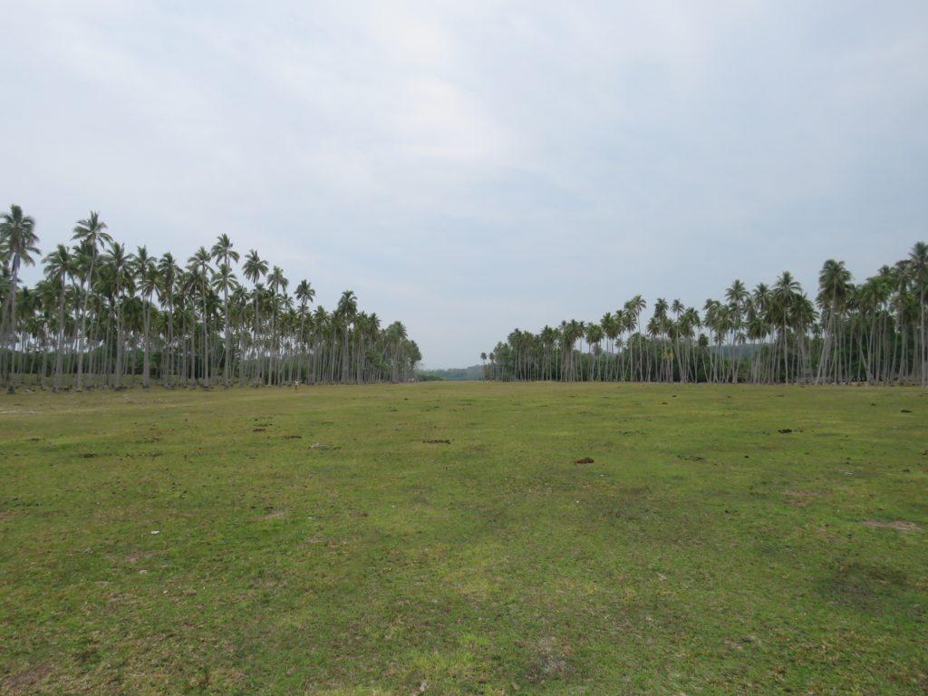 the airstrip on Ratua Island